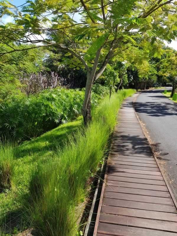 Landscape on-site design in Mauritius