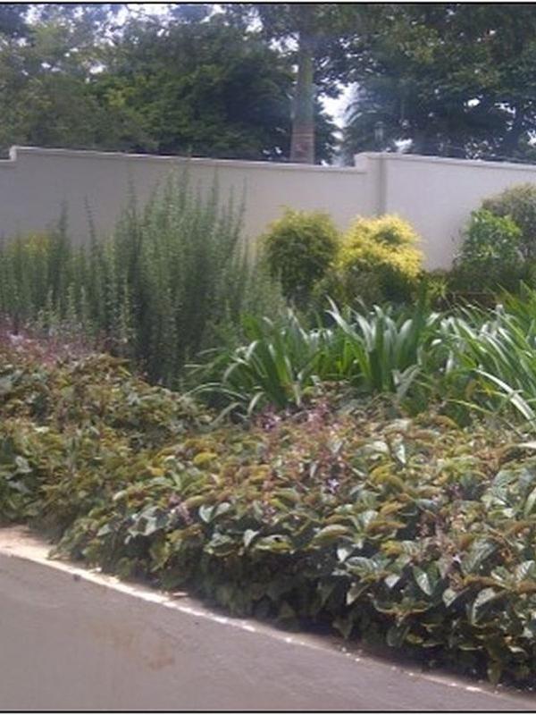Landscape on-site design