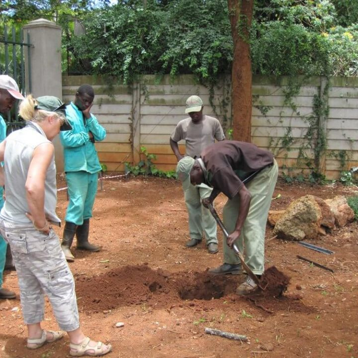Landscaping services - On-site mentoring